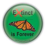 Extinction of the Monarch