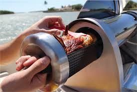 GoSun camping stove.
