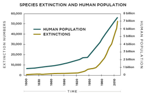Species Extinction and climate change