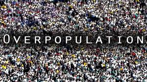 Overpopulation and violence