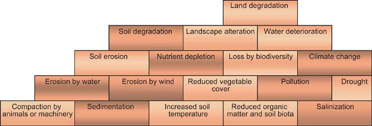 land degradation 7 chapter 2: what is land degradation 21 definition land degradation is a composite term it has no single readily-identifiable feature, but instead.