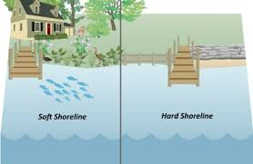 Soft shoreline vs. Hardshoreline