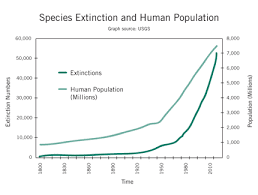 Mass extinction and climate change