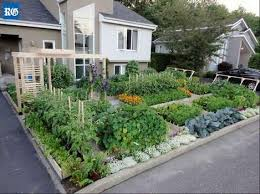 From yard to garden